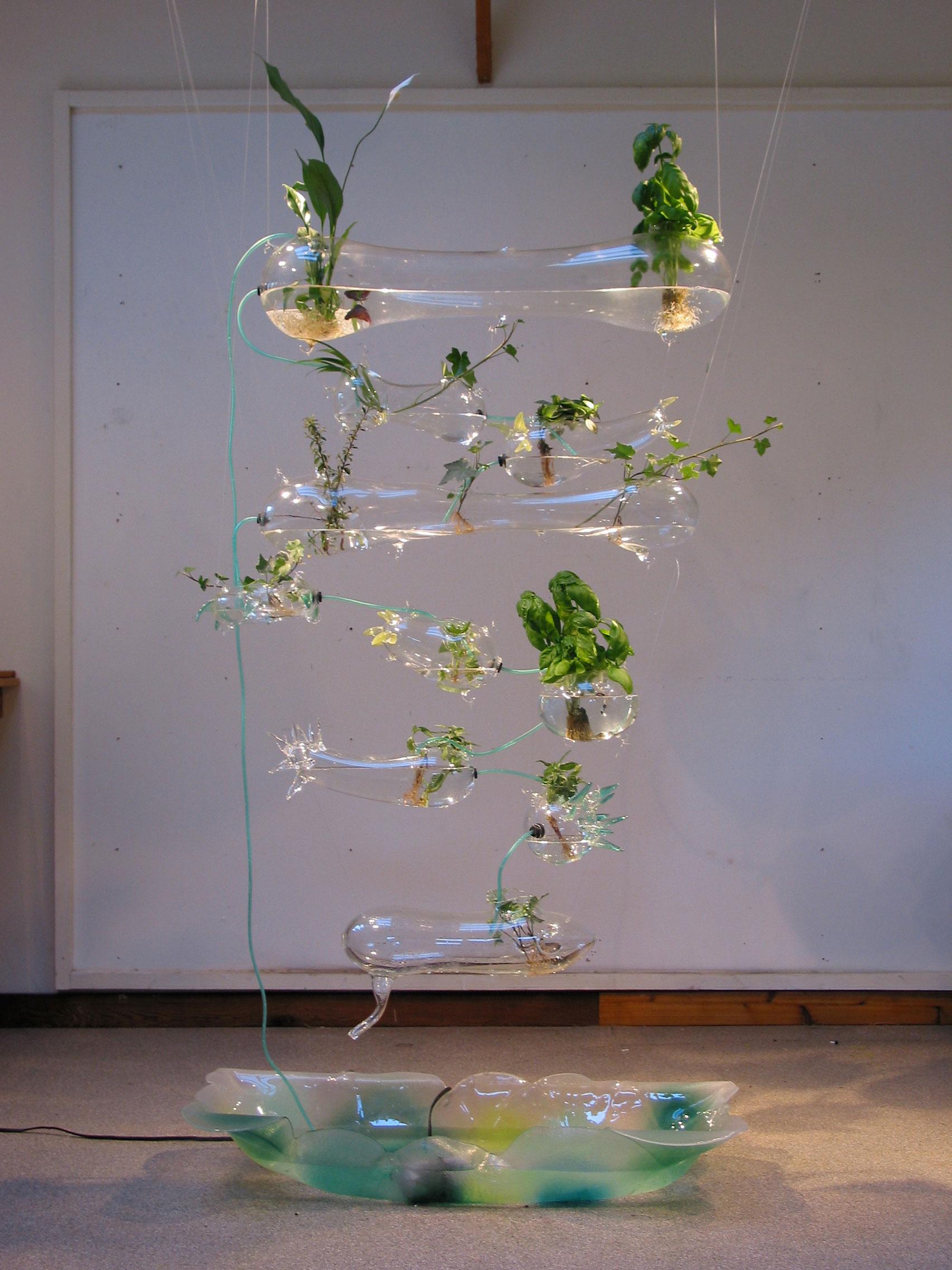 Hydroponic Herb Garden Ken Rinaldo