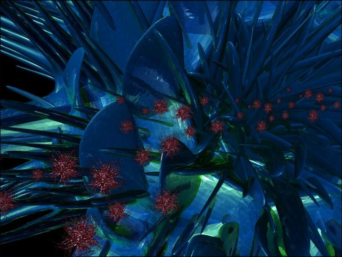 04-cactus-closeup-copy