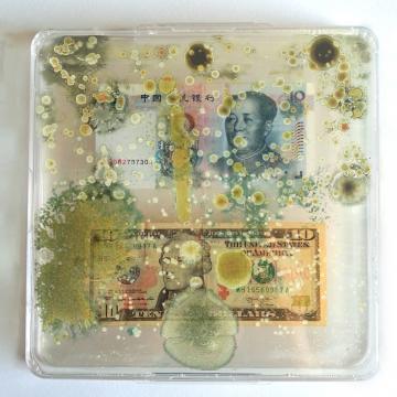 Borderless Bacteria / Colonialist Cash